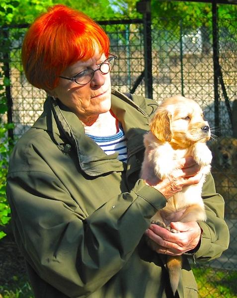 Cuccioli a 40 gg Jessica Biel DGO
